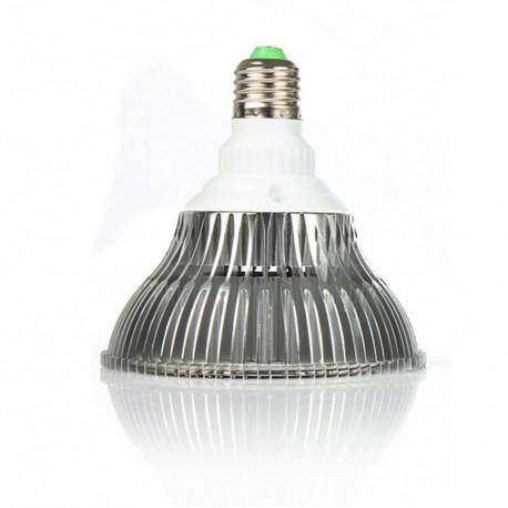 80 W SS žárovka