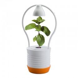 My interior Garden ONE oranžová hydroponická zahrádka pro pěstování jedné rostliny