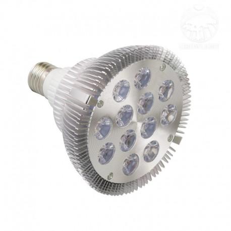 12 W FS LED žárovka pro rostliny - stříbrná