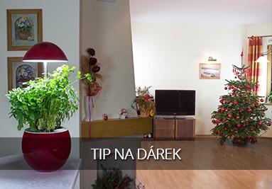 Tip na originální vánoční dárek